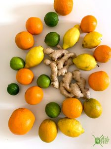 Ingwer Limonade Zitrus früchte Zutaten